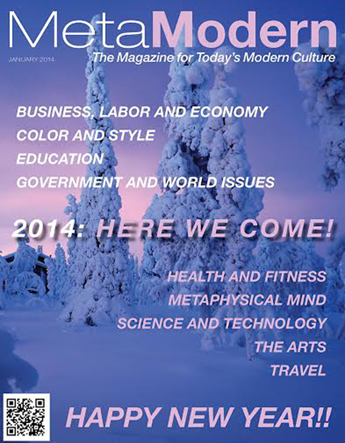 This Month's Edition of Meta Modern Magazine January 2014