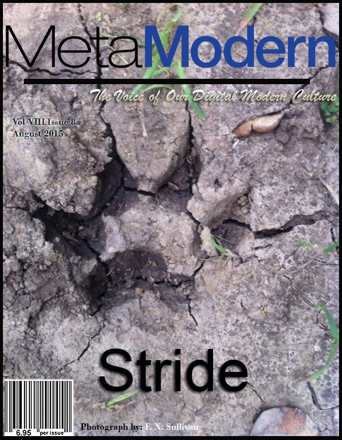 METAMODERN MAGAZINE August 2015