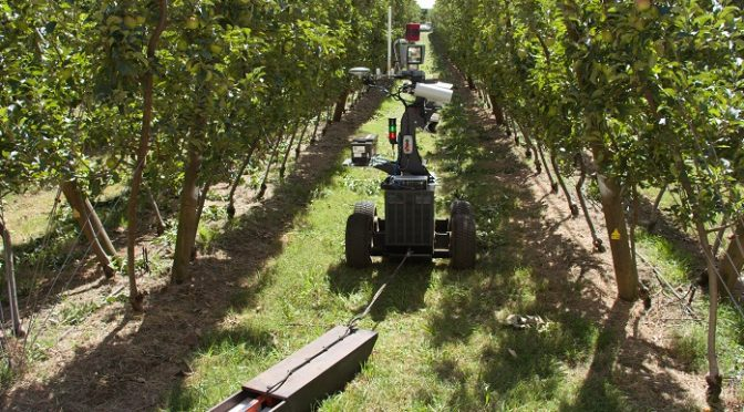 SENSORS, ROBOTICS, AND ARTIFICIAL INTELLIGENCE IN AGRICULTURE